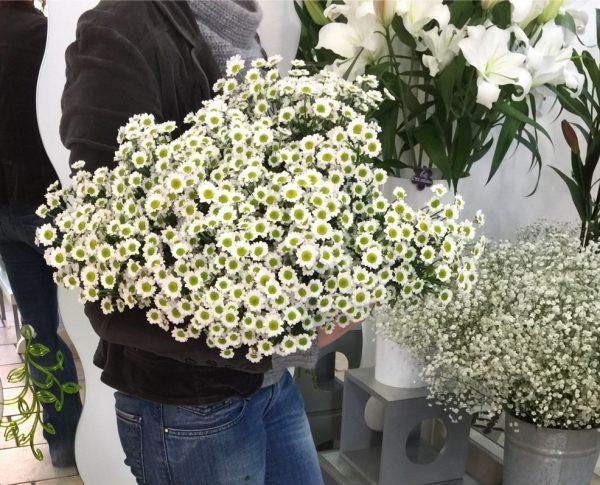 Flower Box La Brassée