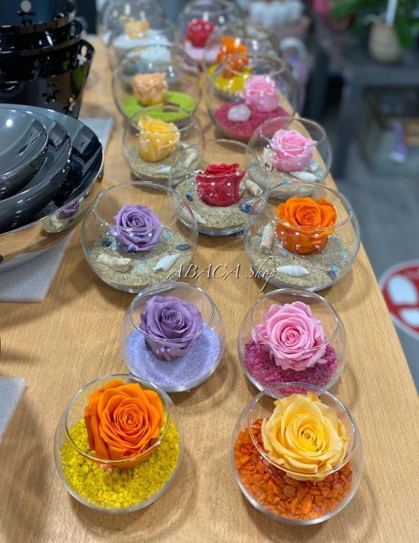 Roses éternelles dans leurs boules de verre